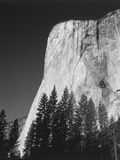 El Capitan  Yosemite National Park  California  USA