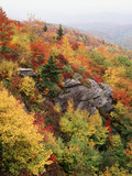 View of Autumnal Rocks  Blue Ridge Parkway  North Carolina  USA