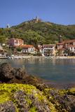 Fort Saint Elme  Collioure  Mediterranean Sea  Languedoc-Roussillon  France