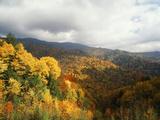 Great Smoky Mountains National Park in Autumn from Thomas Ridge  North Carolina  USA