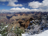 View of Grand Canyon National Park with Snow-Covered Trees  Arizona  USA