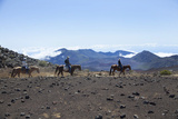 Horseback Trail Ride  Haleakala National Park  Maui  Hawaii  USA