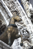 Horse Statue on San Marco  Venice  Italy