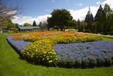 Flower Garden  Pollard Park  Blenheim  Marlborough  South Island  New Zealand