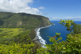 Waipio Valley  Hamakua Coast  Big Island  Hawaii  USA