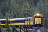 Alaska Railroad Train  Denali National Park  Alaska  USA