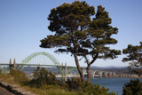 Yaquina Bay Bridge on Highway 101  Newport  Oregon  USA