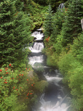 Mt Adams and Twin Falls  Gifort Pinchot National Forest  Washington State  USA