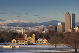 City Skyline from City Park  Denver  Colorado  USA