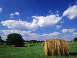 View of Hay Bales in Farm Field  Lexington  Kentucky  USA