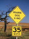 Speed Limit Road Sign  Oklahoma  USA
