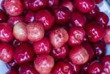 Agriculture  Fresh Picked Cherries in Whitefish  Montana  USA