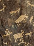 Petroglyphs  Newspaper Rock State Historic Monument  Canyonlands National Park  Utah  USA