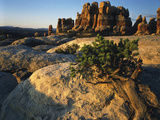 View of Rock Formations at Canyon  Maze District  Utah  USA