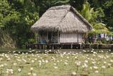 Indigenous Dwelling  Lake Izabal  Guatemala