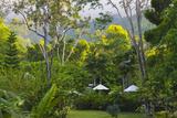 Grounds of Pico Bonito Lodge  Honduras