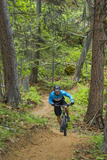 Mountain Biking the Whitefish Trail Near Whitefish  Montana  USA