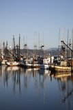 Fishing Boats  Newport  Oregon  USA