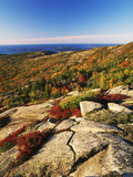 Mt Desert Island  Autumn View  Acadia National Park  Maine  USA