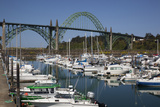 Marina with Pleasure Boats and Yaquina Bay Bridge  Newport  Oregon  USA