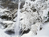 View of Multonmah Falls in Winter  Columbia Gorge Scenic Area  Oregon  USA