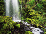 Waterfall  Mt Hood National Forest  Columbia Gorge Scenic Area  Oregon  USA