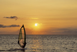 Sunset  Windsurfing  Ocean  Maui  Hawaii  USA