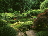 View of Strolling Pond Garden  Portland  Oregon  USA