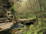 Raven Run Nature Sanctuary  Lexington  Kentucky  USA