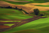 Palouse  Steptoe Butte  Agriculture Patterns  Whitman County  Washington  USA