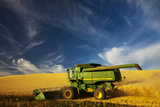 Combine Harvesting Wheat  Palouse Country  Washington  USA