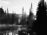 Sunbeam and Trees Reflecting in Lake  Mount Rainier National Park  Washington  USA