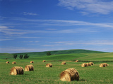Hay Bales  Palouse Farm Country  Washington  USA