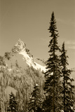 Snow-Covered Mountain  Cascade Range  Mt Rainier National Park  Washington  USA