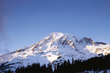 Mt Rainier at Sunset  Mt Rainier National Park  Washington  USA