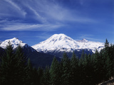 View of Mt Rainier National Park  Washington  USA