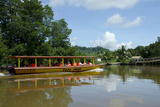 Sight-Seeing Boat Along Dense Mangrove Forest  Brunei  Borneo
