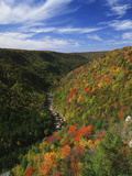 View of Blackwater Canyon in Autumn  Blackwater Falls State Park  West Virginia  USA