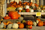 Farmer's Market  Autumn in Luling  Texas  USA