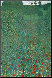 Gustav Klimt (Field of Poppies) Art Poster Print
