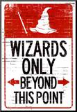 Wizards Only Beyond This Point Sign Poster