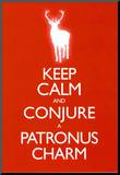 Keep Calm and Conjure a Patronus Charm Carry On Spoof Poster Print Reproduction montée