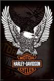 Harley Davidson - Eagle