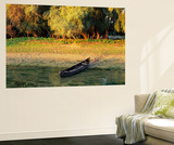 Panorama of Lakes and Channels in the Danube Delta  Romania
