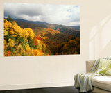 Great Smoky Mountains National Park in Autumn from Thomas Ridge  North Carolina  USA