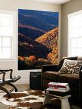 Great Smoky Mountains National Park  North Carolina  USA