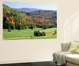 View of Peacham Hills in Autumn  Northeast Kingdom  Vermont  USA
