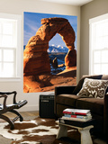 View of Delicate Arch at Arches National Park  Utah  USA