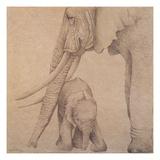 Elefantes en el Papel Tres