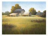 Country Meadow I
